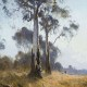 red_room_co_the_disappearing_kangaroo_flat