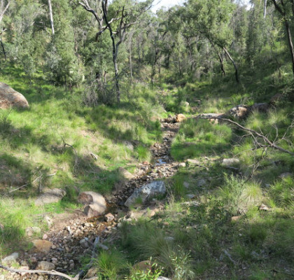 55-west-spirey-creek-warrumbungle-national-park-nsw