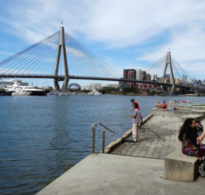 View from Blackwattle Bay Park