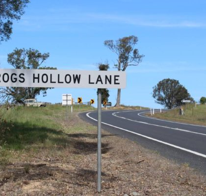 frogs hollow